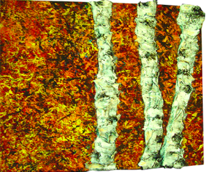 """Birch Blaze"" - Acrylic on Canvas - 12 x 12"